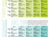 At Home Juice Cleanse Plan Best 25 2 Day Cleanse Ideas On Pinterest Detox Cleanse