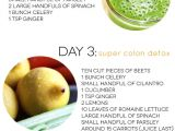 At Home Juice Cleanse Plan Three Day Juice Cleanse Dash Of Darling