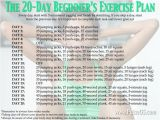 At Home Work Out Plans Fitness Workout Plan for Beginners Workout Pinterest