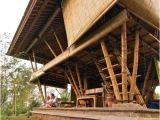 Bamboo Home Plans Bamboo House Home Design Ideas Pictures Remodel and Decor