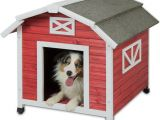 Barn Dog House Plans Old Red Barn Dog House Red White Jeffers Pet