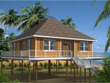 Beach Home Plans On Pilings Beauteous 30 Beach House Plans On Pilings Inspiration Of