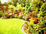 Better Homes and Gardens Flower Garden Plans Better Homes and Gardens Plans Home Planning Ideas with
