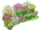 Better Homes and Gardens Flower Garden Plans Heat Loving Garden Plan Better Homes Gardens