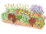 Better Homes and Gardens Flower Garden Plans Hot Color Flower Garden Plan