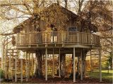 Big Tree House Plans 20 Incredible Tree Houses From Around the World Ginva