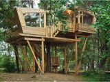 Big Tree House Plans Almke Treehouse by Baumraum Provides Gathering Place for