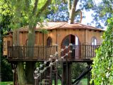 Big Tree House Plans Tree House Design Ideas for Modern Family
