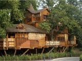 Big Tree House Plans What is Glamping Discover Glamping