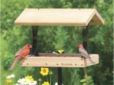 Bird House Feeder Plans Bird Feeder Plans Free Online Sickchickchic Com