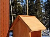 Bird House Feeder Plans Bird Houses Decorative Bird Houses Birdhouses Bird
