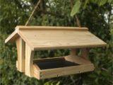 Bird House Feeder Plans Diy Bird Feeders On Pinterest Wooden Bird Feeders Bird