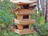 Bird House Feeder Plans Large Capacity Bird Feeder Plans Bird Cages