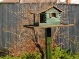 Bird House Feeder Plans Pdf Giant Bird House Plans Plans Free