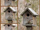 Bird House Plans for Sparrows Sparrow Bird House Plans