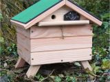 Bumble Bee House Plans 11 Best Bumblebee Hive Images On Pinterest Bee House