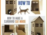 Cardboard Cat House Plans Cardboard Cat House Diy House Best Design