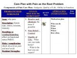 Care Plan for Elderly at Home Care Plan for Family Interdisciplinary Template Definition