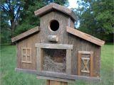 Cedar Bird House Plans Rustic Reclaimed Barn with A View Birdhouse