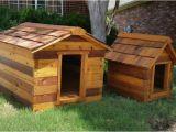 Cedar Dog House Plans 12 Wonderfully Unusual Dog Houses