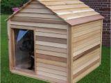 Cedar Dog House Plans Extra Large Cedar Dog House