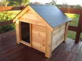 Cedar Dog House Plans the Ultimate Dog House