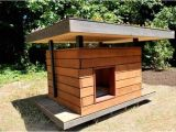 Cedar Dog House Plans Wooden Pallet Dog House Plans Pallet Wood Projects
