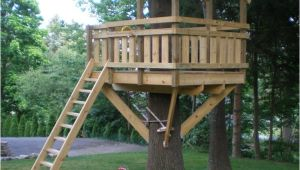 Cheap Tree House Plans Cheap Tree House Plans Elegant Treehouse Plans for Kids