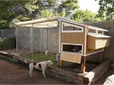 Chicken House Plans for 20 Chickens House Plans Chicken House Plans for 20 Chickens Awesome