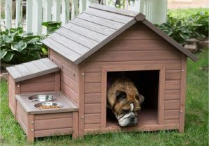 Cold Weather Dog House Plans Dog House Designs Www Pixshark Com Images Galleries