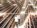 Commercial Chicken House Plans Design Of Commercial Chicken Houses Home Design and Style