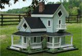 Cool Bird House Plans Amish Bird Houses Joy Studio Design Gallery Best Design