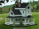 Cool Bird House Plans Amish Bird Houses Joy Studio Design Gallery Best Design