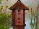 Cool Bird House Plans Cool Bird House Plans Escortsea
