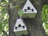 Cool Bird House Plans Cool Bird Houses