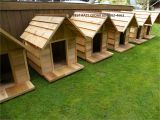 Custom Dog Houses Plans Custom Dog Houses House Plan 2017