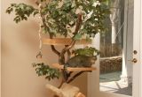 Diy Cat Tree House Plans 15 Creative Cat Houses and Cool Cat Bed Designs
