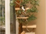 Diy Cat Tree House Plans Cat Tree Houses Curbly