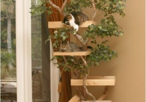 Diy Cat Tree House Plans Cat Tree Houses Curbly