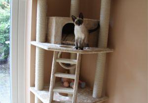 Diy Cat Tree House Plans Pdf Diy Cat tower Plans Download Cedar Log Swing Plans