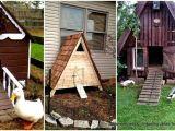 Diy Duck House Plans 57 Diy Chicken Coop Plans In Easy to Build Tutorials 100