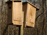 Diy Duck House Plans Diy How to Build A Wood Duck House Pdf Download 18 Inch