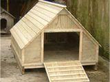 Diy Duck House Plans Domestic Duck House Plans Free
