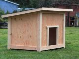 Do It Yourself Home Plans Do It Yourself Dog House Plans Beautiful Dog House Plan 2