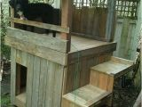 Dog House Plans for 2 Dogs Beautiful 2 Story Dog House Plans New Home Plans Design