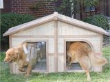 Dog House Plans for 2 Dogs Dog House Plans for Two Big Dogs