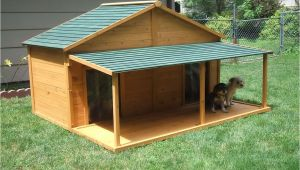 Dog House Plans for 2 Large Dogs Your Big Friend Needs A Large Dog House Mybktouch Com