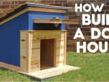 Dog House Plans Home Depot Beautiful Dog House Plans Home Depot New Home Plans Design