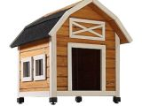 Dog House Plans Home Depot Dog House at Home Depot 28 Images New Age Pet Eco