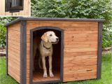 Dog House Plans Home Depot Igloo Dog House Door Fearsome 23 Luxury Home Depot Dog